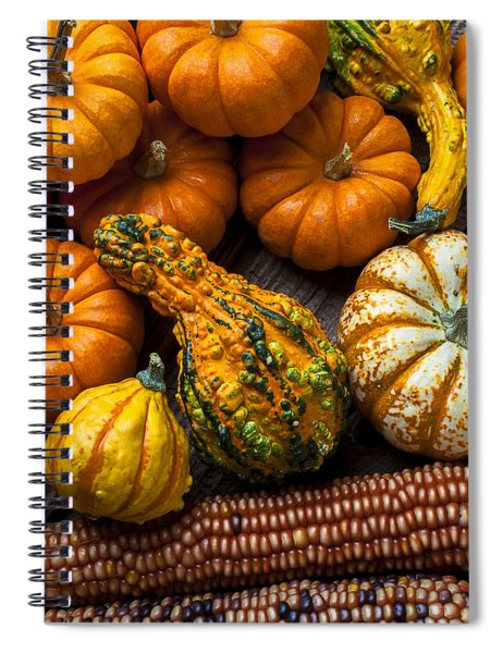 Beautiful Autumn Spiral Notebook