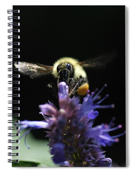 Beeware Spiral Notebook
