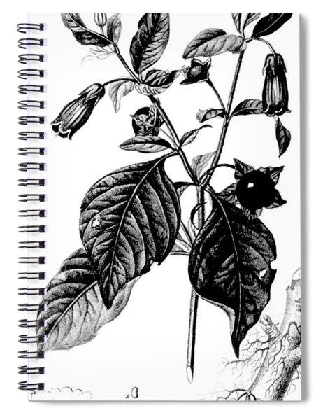 Belladonna, Alchemy Plant Spiral Notebook