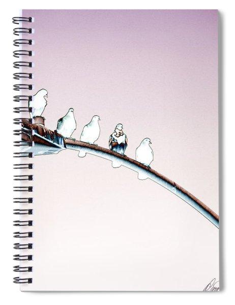 Birds On A Streetlight Spiral Notebook