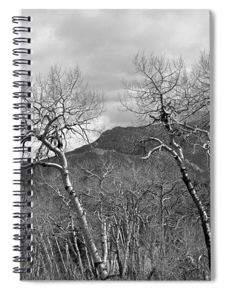 Black And White Aspen Spiral Notebook