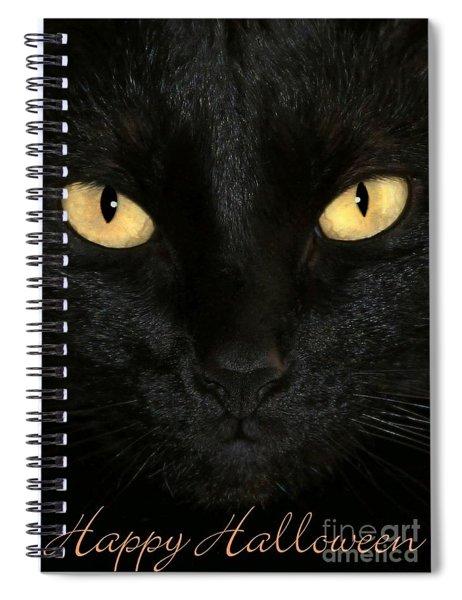 Black Cat Halloween Card Spiral Notebook