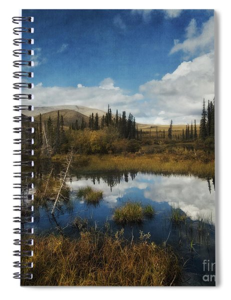 Blissful Lone Land Spiral Notebook