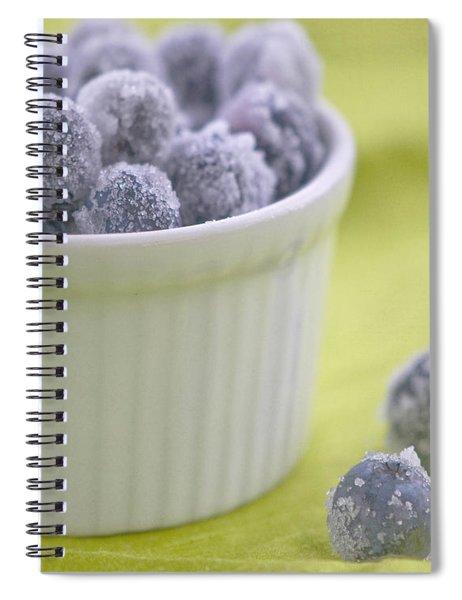 Blueberries Spiral Notebook