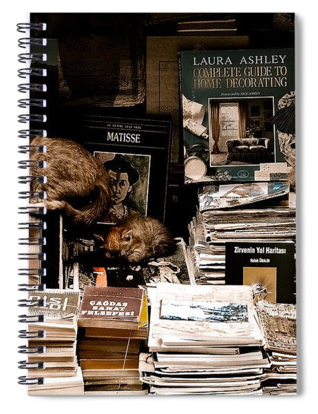 Istanbul, Turkey - Bookkeepers Spiral Notebook