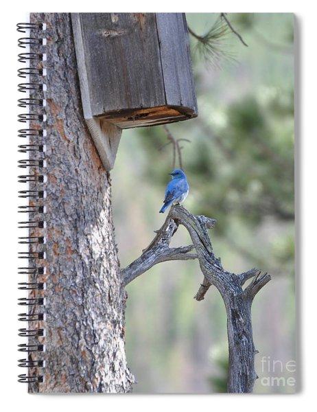 Boy Blue Spiral Notebook
