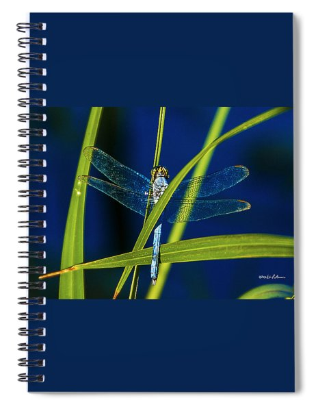 Brilliant Dragon Fly Spiral Notebook