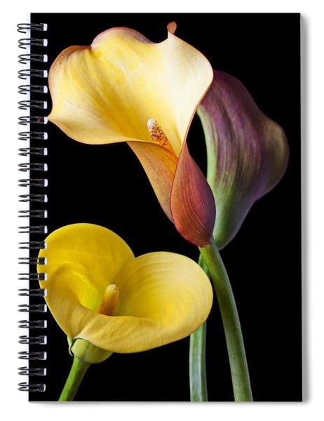 Calla Lilies Still Life Spiral Notebook