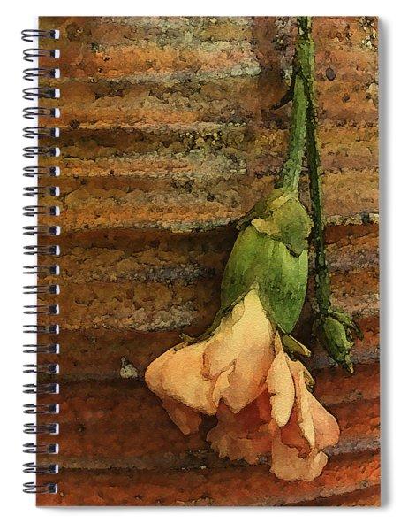 Albuquerque, New Mexico - Carnation Spiral Notebook