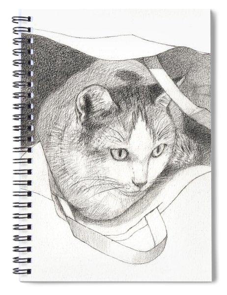 Cat In A Bag Spiral Notebook