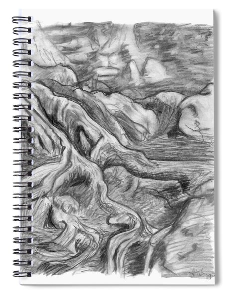 Charcoal Drawing Of Gnarled Pine Tree Roots In Swampy Area Spiral Notebook