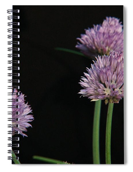 Chives 1 Spiral Notebook