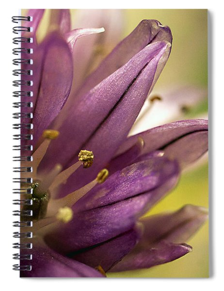 When  Chives  Blossom Spiral Notebook