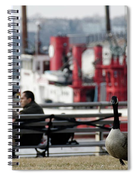 City Geese Spiral Notebook