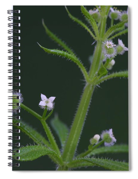 Cleavers Spiral Notebook