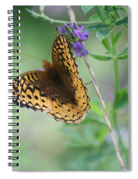 Close-up Butterfly Spiral Notebook