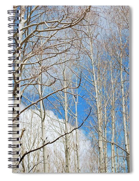 Cloudy Aspen Sky Spiral Notebook