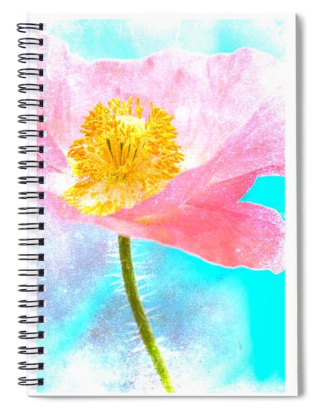 Colorful Flowers Triptych Spiral Notebook