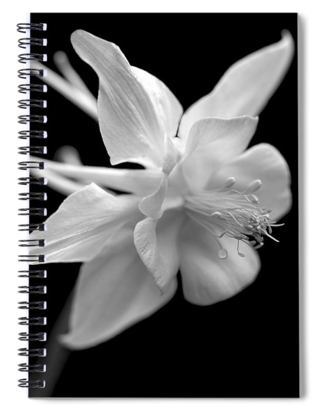 Columbine Flower Macro Black And White Spiral Notebook