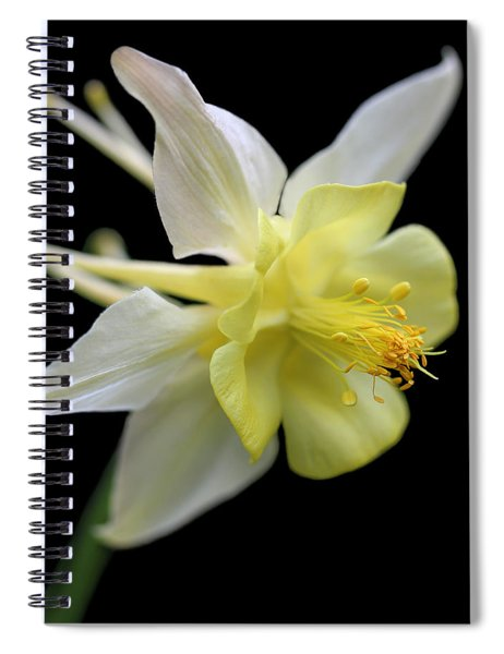 Columbine Flower Macro Spiral Notebook