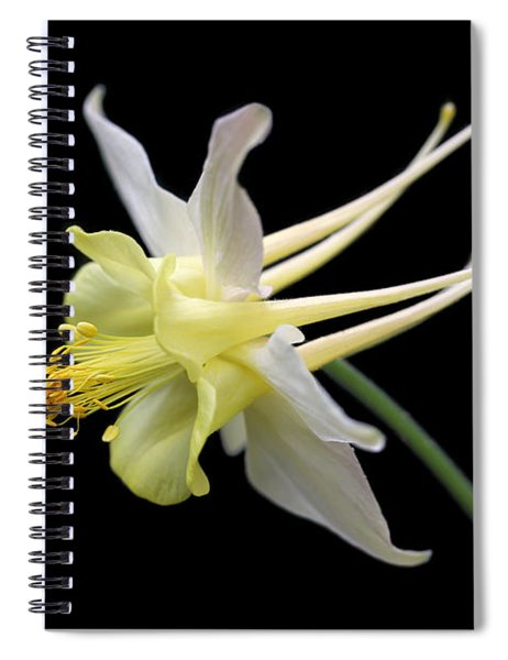 Columbine Flower Portrait Spiral Notebook