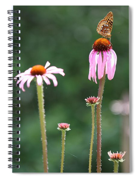 Coneflowers And Butterfly Spiral Notebook