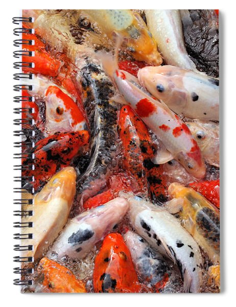 Coy Carp Fury Spiral Notebook