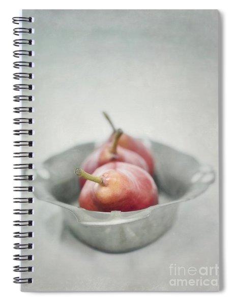 Crimson And Silver Spiral Notebook