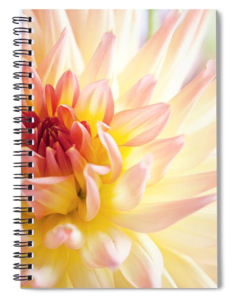 Dahlia Flower 01 Spiral Notebook