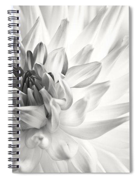 Dahlia Flower 02 Spiral Notebook