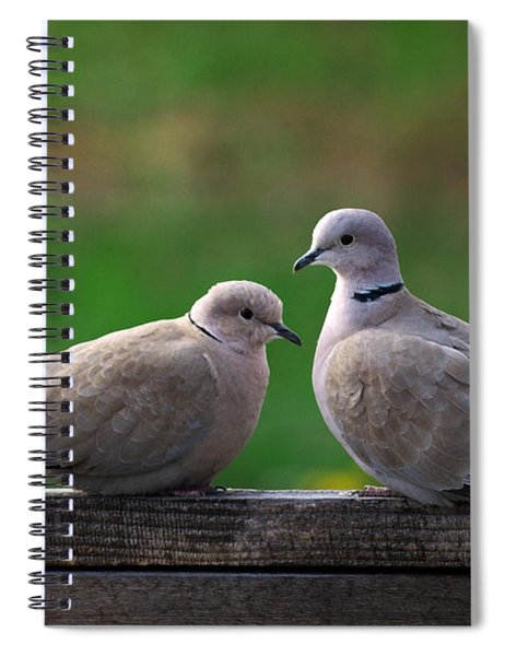 Doves Spiral Notebook
