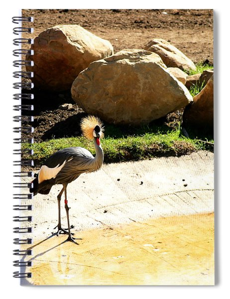East African Crowned Crane Spiral Notebook