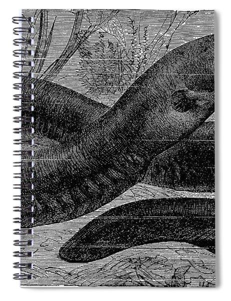 Electric Eel Spiral Notebook