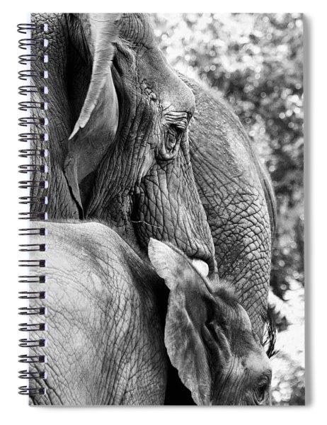 Elephant Ears Spiral Notebook