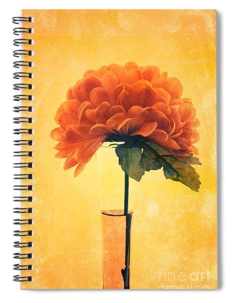 Estillo - 01i2t03 Spiral Notebook