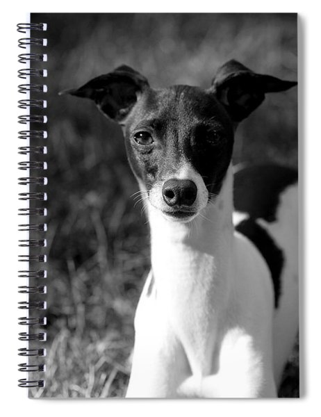 Ethan In Black And White Spiral Notebook