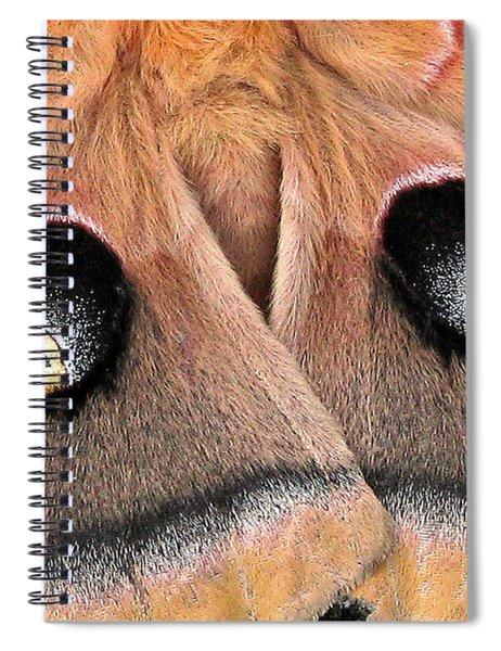 Eyes Of Deception Spiral Notebook