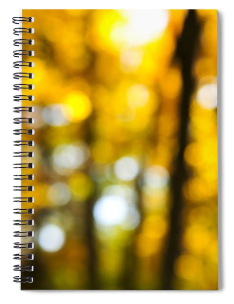 Fall Forest In Sunshine Spiral Notebook