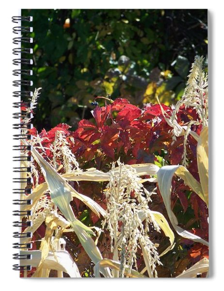 Fall Harvest Of Color Spiral Notebook