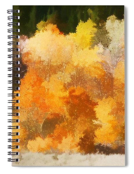 Fall In The Sierra IIi Spiral Notebook