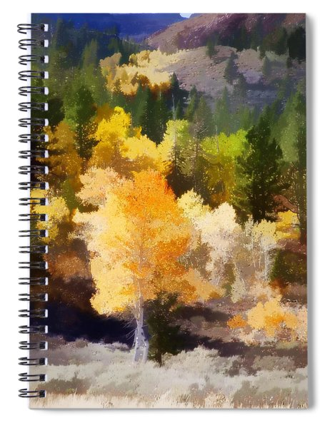 Fall In The Sierra Iv Spiral Notebook