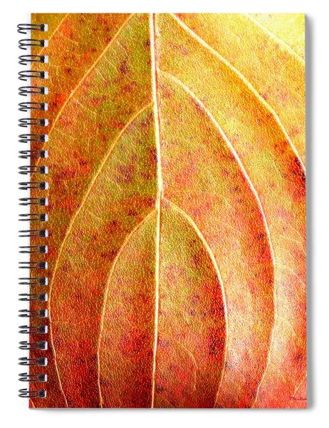 Fall Leaf Upclose Spiral Notebook
