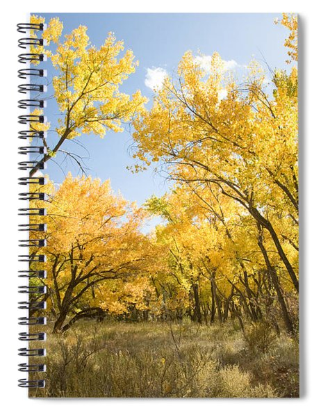 Fall Leaves In New Mexico Spiral Notebook