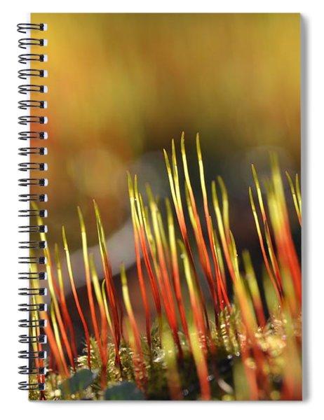 Flaming Moss Spiral Notebook