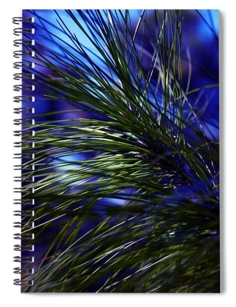 Florida Grass Spiral Notebook