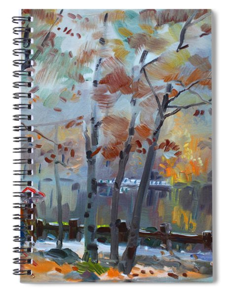 Foggy Rain By The Lake Spiral Notebook