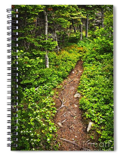 Forest Path In Newfoundland Spiral Notebook