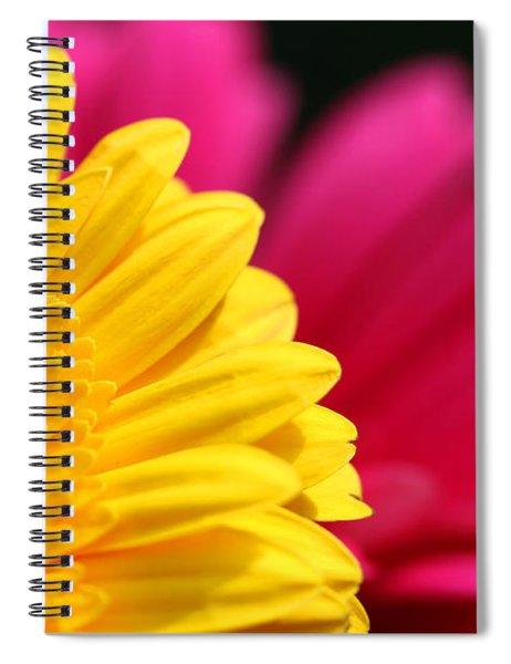 Gerbera Daisies Spiral Notebook