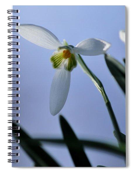 Giant Snowdrop Spiral Notebook