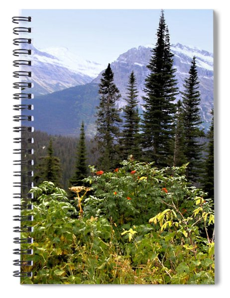 Glacier Scenery Spiral Notebook